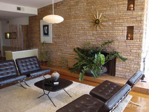 Time to cozy it up modern charlotte nc homes for sale - Mid century modern wood stove ...