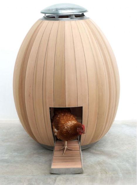 Modern Charlotte - mod chicken coop