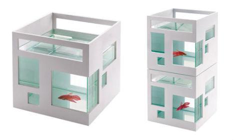 Modern Charlotte - mod fish tank