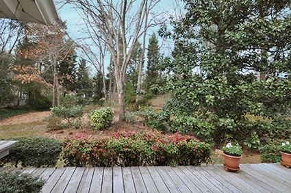 Robmont_backyard