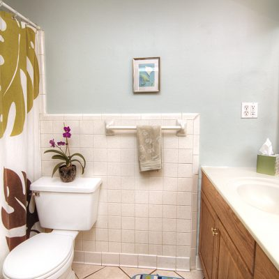 4479 Applegate Road Mod bathroom